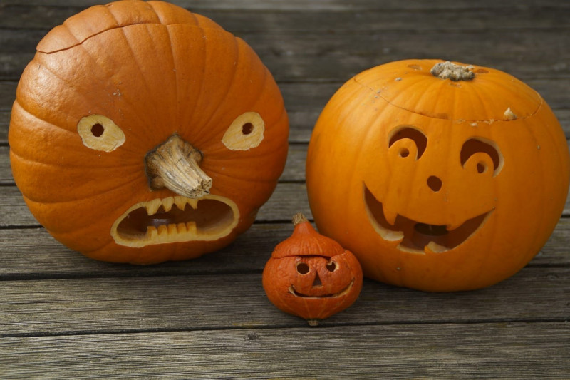 Pumpkin history, fun pumpkin facts and pumpkin carving at Rothamsted in Harpenden