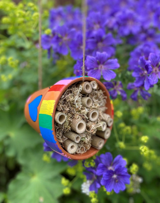 Build a Bee Hotel at Rothamsted's Summer Crafting Week (Monday)