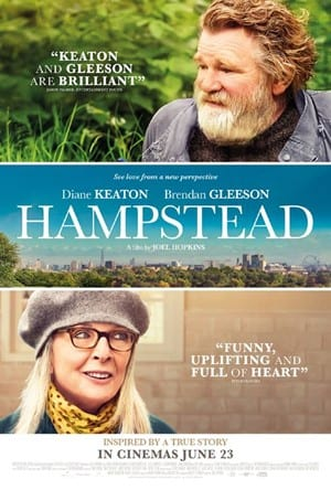 Film Night at Rothamsted Conference Centre – Hampstead (12A)